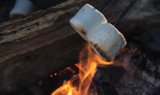 2021 Virtual Campfires 1270px